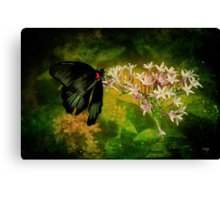 Fairyland Canvas Print