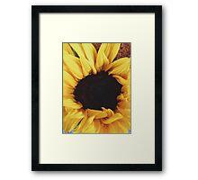 SUMMER SUNFLOWER Framed Print