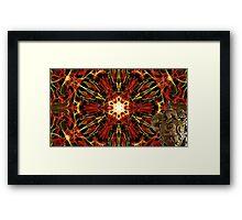 Kaleidoscope of the Brave Framed Print