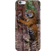 Climbing up the tree iPhone Case/Skin