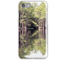 Florida Beauty 10 iPhone Case/Skin