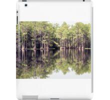Florida Beauty 10 iPad Case/Skin