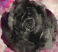 Watercolor Black Rose by TinaGraphics