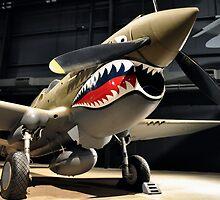 Tiger Shark Airplane WWII  by Jason Franklin