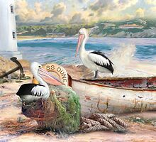 Pelican Cove by Trudi's Images