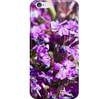 Tiny Bright Purple Flowers iPhone Case/Skin