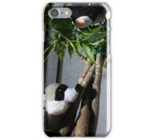 Raccoon and Cat Hide and Seek iPhone Case/Skin