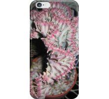 Coral Cactus iPhone Case/Skin