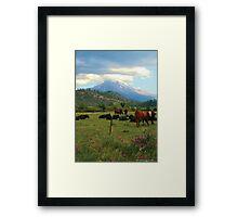 Mt. Shasta Meadow Framed Print