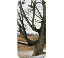 Wyeth Country iPhone Case/Skin