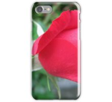 Red Rose Blooming iPhone Case/Skin