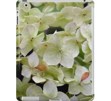 Natural background with small green leaves and flowers. iPad Case/Skin