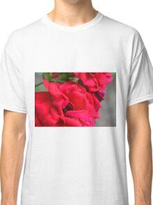 Macro on red roses petals. Classic T-Shirt