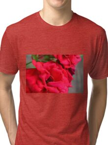 Macro on red roses petals. Tri-blend T-Shirt