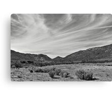 Arizona Landscape Canvas Print