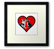Kissing Kittens Framed Print