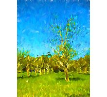 Trees in the Wind Photographic Print