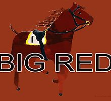 Big Red the World's Greatest Racehorse by Ginny Luttrell