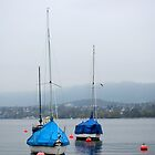Misty Day on Lake Zurich by Tiffany Dryburgh