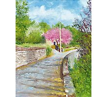 Chinon Judas Tree Photographic Print