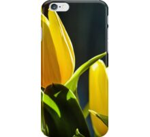 Tulips I iPhone Case/Skin