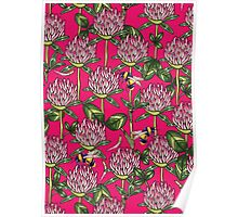 Red clover pattern Poster