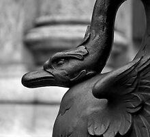 Cranky Viennese Swan by Tiffany Dryburgh
