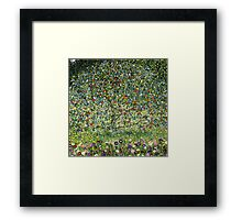 Apple Tree by Gustav Klimt Vintage Fine Art Framed Print