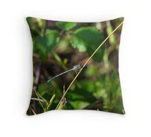 4 - Libellula Throw Pillow