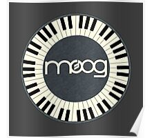 Wonderful vintage moog synth Poster