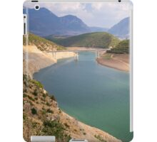 Amazing Valley - Nature Photography iPad Case/Skin