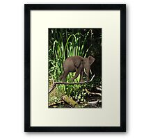 Lightweight Framed Print