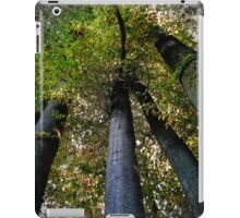 forest pillars iPad Case/Skin