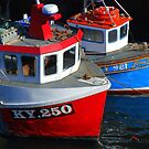 Fishing Boats moored at Pittenweem Harbour by ©The Creative  Minds