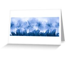 Floral home decoration. Agapanthus 8 Greeting Card
