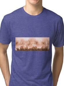 Floral home decoration. Agapanthus 9 Tri-blend T-Shirt