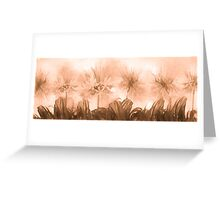 Floral home decoration. Agapanthus 9 Greeting Card