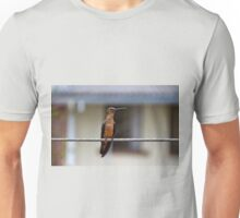 Meet Andrea The Giant II Unisex T-Shirt