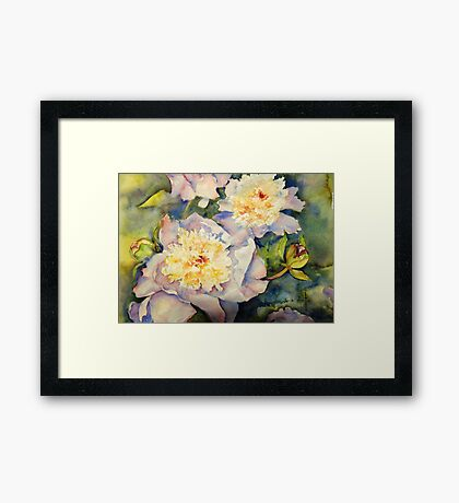 Yellow Pink Peonies Framed Print