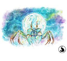 Galaxy Krabbe Photographic Print