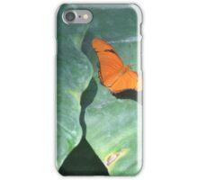 Orange Sulphur butterfly macro on petals color photo 2 iPhone Case/Skin