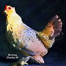 Fancy Chickens:  Queen For A Day by Bunny Clarke