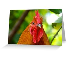 Cockerel rooster with small comb Greeting Card