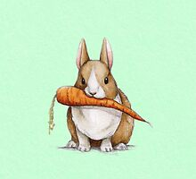 Bunny Eating a Carrot by Katie Corrigan