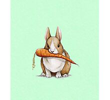 Bunny Eating a Carrot Photographic Print