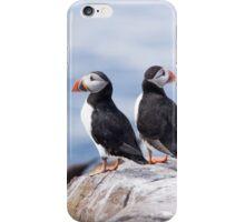 Puffins iPhone Case/Skin