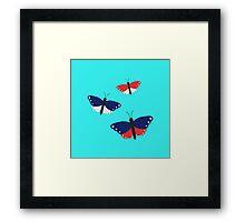 USA butterflies   Framed Print