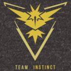 Team Instinct by Zanie