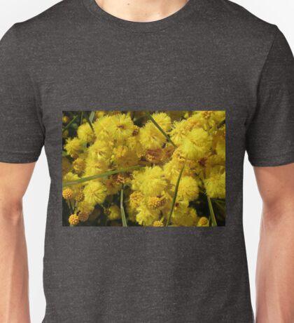 Golden Acacia  (Acacia pycnantha) Unisex T-Shirt