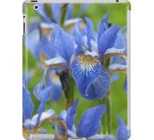 Into a blue iris dream... iPad Case/Skin